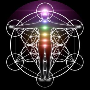 Entwicklung mit Sinn - Blume des Lebens & Heilige Geometrie