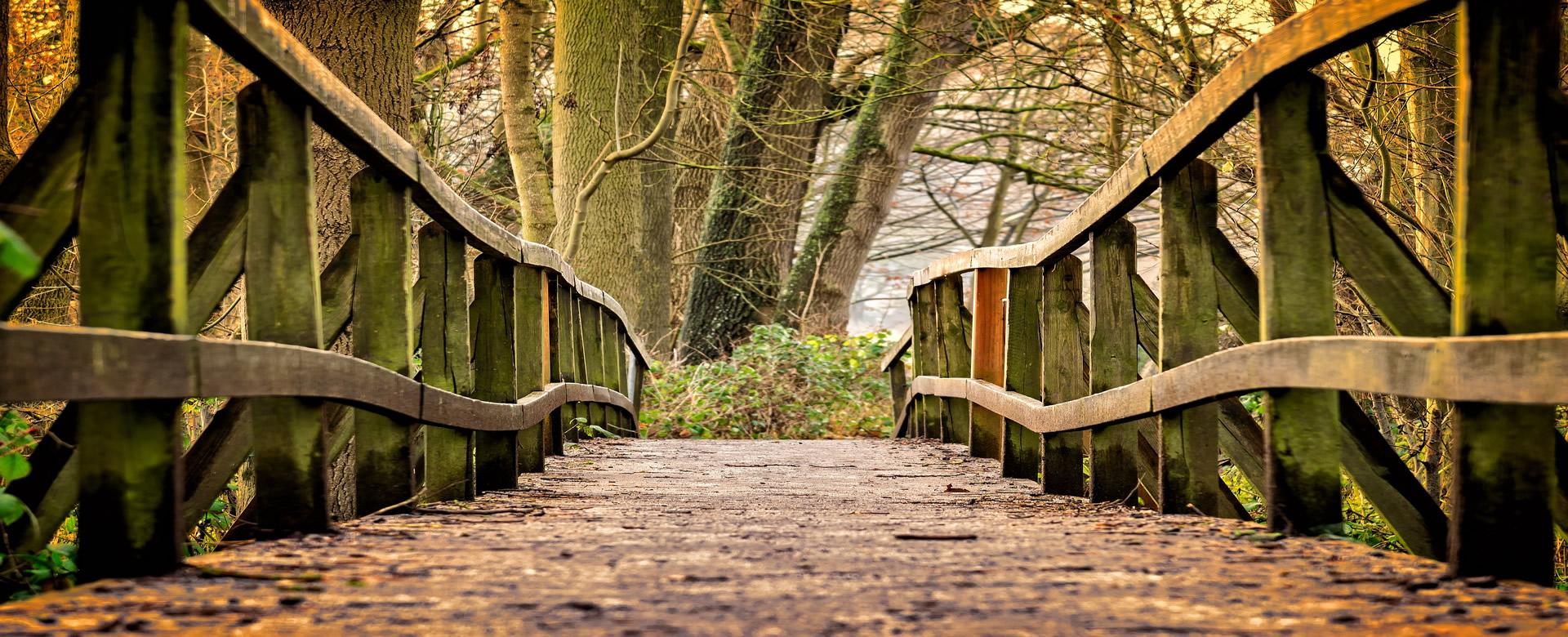 Brücke - Möglichkeiten von Transformation und Selbstentwicklung