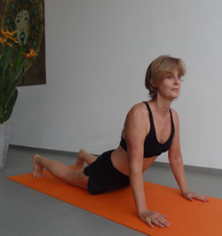 Bauchmuskulatur, Schulter- und Rückenmobilisation im FaYo Training